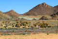 Stone desert landscape of in geobab national park Stock Images