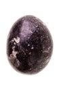 Stone dragon egg Royalty Free Stock Photo