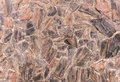 Stone floor plastered with cement for background Royalty Free Stock Photos