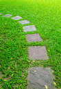 Stone foot path in garden Royalty Free Stock Photo