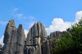 Stone forest Stock Photos