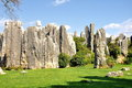 Stone forest the or shilin is a notable set of limestone formations located in shilin yi autonomous county yunnan province china Stock Photo