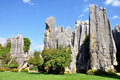 Stone forest the or shilin is a notable set of limestone formations located in shilin yi autonomous county yunnan province china Royalty Free Stock Photos
