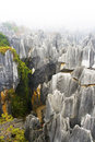 Stone Forest, Yunnan, China Royalty Free Stock Photography