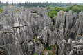 Stone forest yunnan china formation in shilin Royalty Free Stock Photo