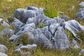 Stone formations in the motueka area new zealand Stock Image