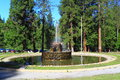 Stone Fountain in Forest Royalty Free Stock Photo
