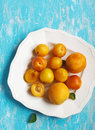 Stone fruits on plate. Yellow plums, apricots and nectarines Royalty Free Stock Photo