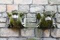 Stone gargoyle Royalty Free Stock Photo