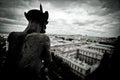 Stone Gargoyles of Notre Dame Royalty Free Stock Photo