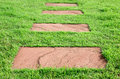 Stone on grass, walk way Royalty Free Stock Photo
