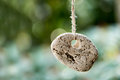 Stone with a hole against blurred background with copyspace Royalty Free Stock Photo