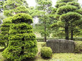 Stone inscription among pine trees at rikugien garden tokyo Stock Photography