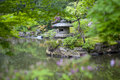 Stone lantern in a japanese garden on rainy day selective focus on the Stock Image