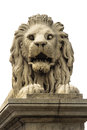 Stone lion of budapest isolated from the chain bridge over the danube river hungary Stock Photo