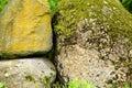Stone, moss Royalty Free Stock Photo