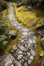 Stone Path in Mossy Garden Stock Photo