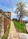 Stone path next to old houses and large pear tree with spring flowers. La Hiruela Madrid