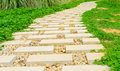 Stone path in the park Royalty Free Stock Images