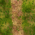 Stone path of stones through moss and vegitation Royalty Free Stock Image
