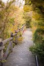 Stone pathway into garden during day time Stock Photo