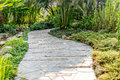 Stone pathway into garden during day time Royalty Free Stock Images