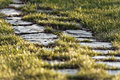 Stone pathway on green grass with short depth of field Royalty Free Stock Photo