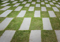 Stone pave decorated and grass background Royalty Free Stock Image