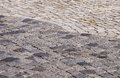 Stone paved park alley closeup as background Royalty Free Stock Image