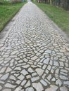 Stone paved pathway Royalty Free Stock Photo