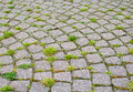 Stone paved road with grass growing between Royalty Free Stock Images