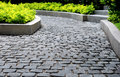 Stone pavement in park Royalty Free Stock Photo