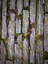 Stone pavers background in nature a textured detail Royalty Free Stock Photo