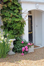 Stone porch with plants and flowers photo of a beautiful summer growing all around Royalty Free Stock Image