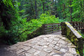 Stone ramp to forset bridge Stock Image