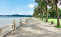 Stone road by seashore with balustrade and coconut tree in south china Stock Photography