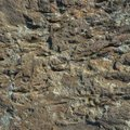 Stone/Rock Surface Texture Royalty Free Stock Photo