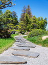 Stone s way in the japanese garden in sunny day Stock Image