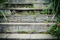 Stone staircase old overgrown with grass outdoors Royalty Free Stock Images