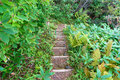 Stone staircase in a park