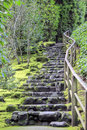 Stone Stairs at Japanese Garden Stock Photography