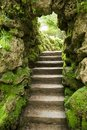 Stone stairs at nature Stock Images