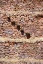 Stone stairsteps, Inca stone walls Stock Image