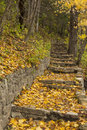 Stone step trail in breezy autumn a the woods during on a day Stock Images