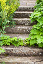 Stone steps ascending overgrown and weathered Stock Photos