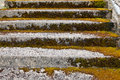 Stone steps ascending overgrown and weathered Stock Image
