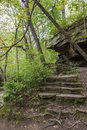 Stone Steps in Forest Royalty Free Stock Photo