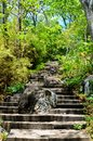 Stone steps leading up hill through woods Stock Image