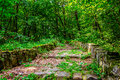 Stone steps through the park with foliage Royalty Free Stock Photo