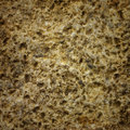Stone surface texture close up Royalty Free Stock Photography